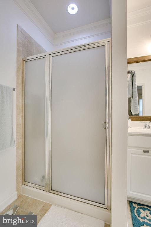 SEPARATE MASTER SHOWER - 41676 BRANDENSTEIN DR, ALDIE