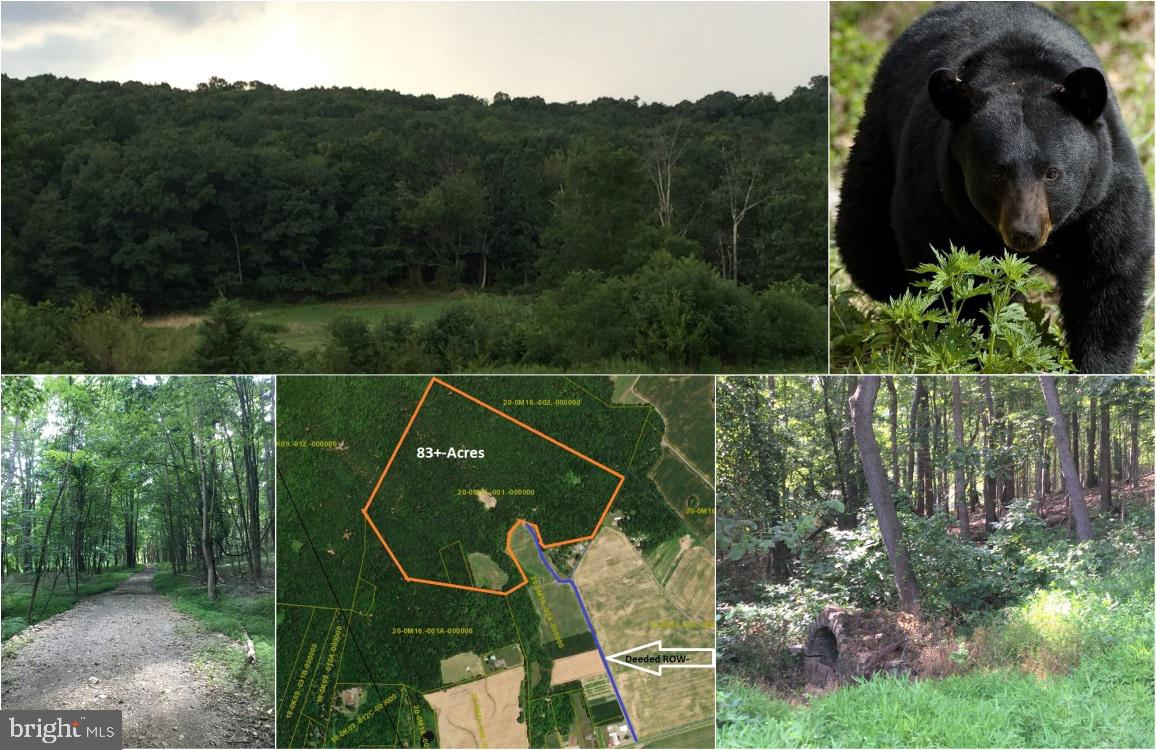 Land for Sale at St. Thomas, Pennsylvania 17252 United States