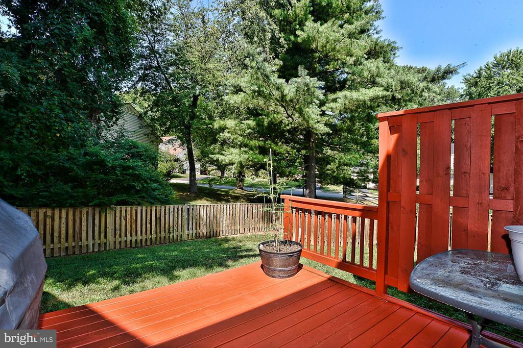 Private backyard - 10011 DOWNEYS WOOD CT, BURKE