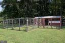 Fully enclosed garden and chicken coup - 36180 TURKEY ROOST RD, MIDDLEBURG
