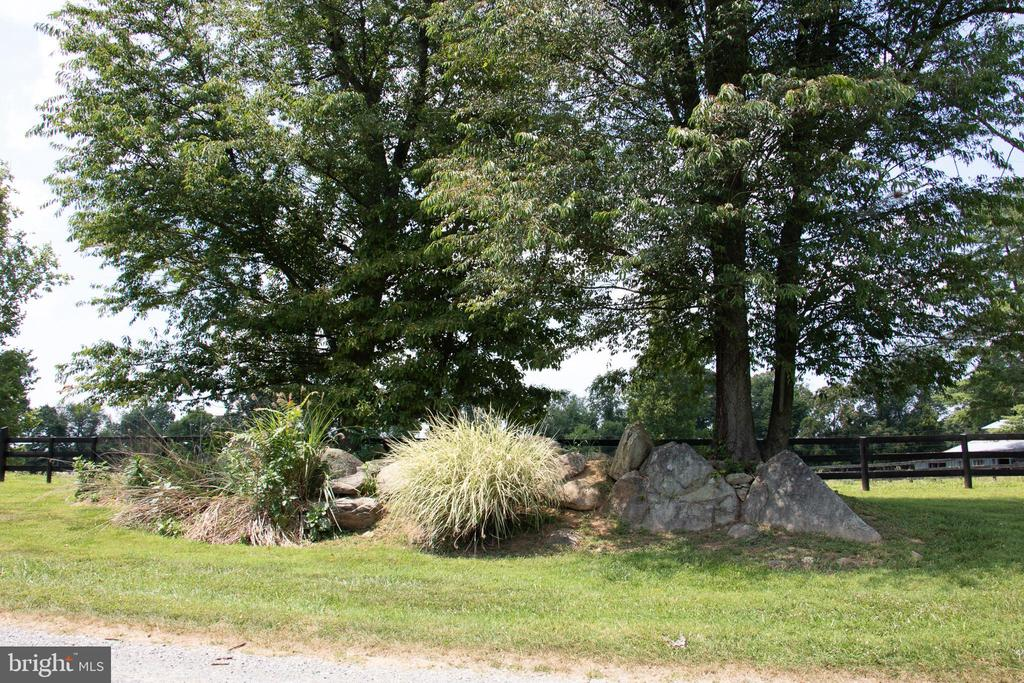 Out cropping of plantings and rock garden - 36180 TURKEY ROOST RD, MIDDLEBURG