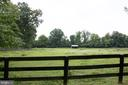 Run to shed in paddock - 36180 TURKEY ROOST RD, MIDDLEBURG