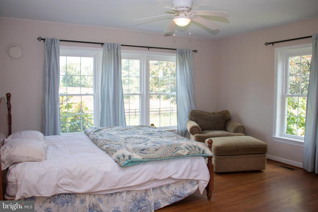 Master suite with loads of light - 36180 TURKEY ROOST RD, MIDDLEBURG