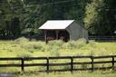 Run to shed - 36180 TURKEY ROOST RD, MIDDLEBURG