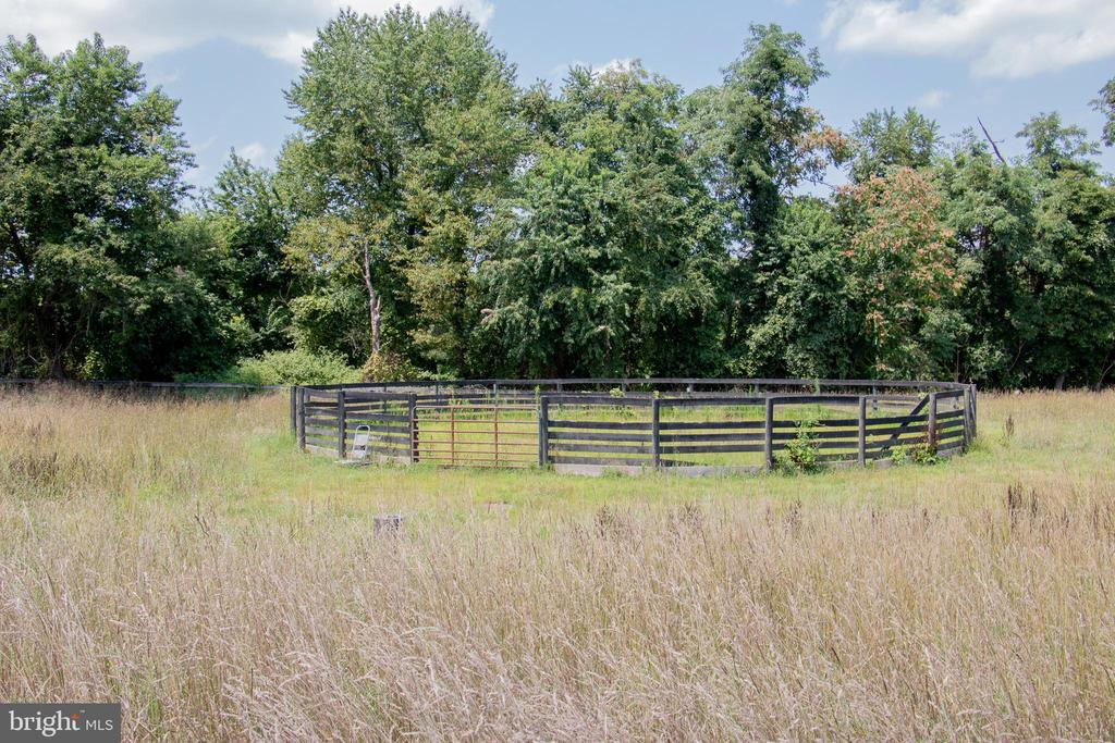 Riding ring - 36180 TURKEY ROOST RD, MIDDLEBURG