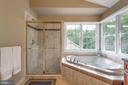 Master bath - 20132 BANDON DUNES CT, ASHBURN