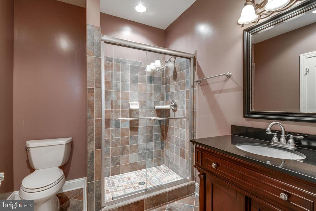 Lower level full bath - 20132 BANDON DUNES CT, ASHBURN
