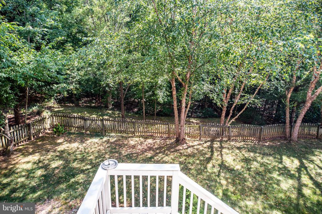 Beautiful Birch Trees edge the fenced area. - 56 KIRBY LN, STAFFORD