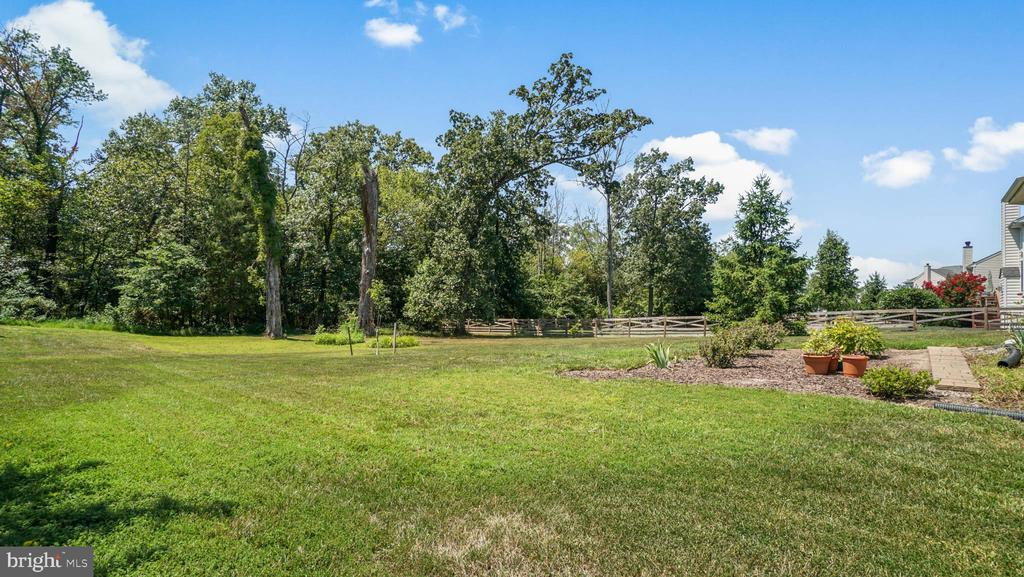Backyard Back to wood - 42531 LONGACRE DR, CHANTILLY
