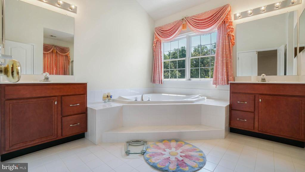 Huge luxury master BR,  tub with the wood view - 42531 LONGACRE DR, CHANTILLY