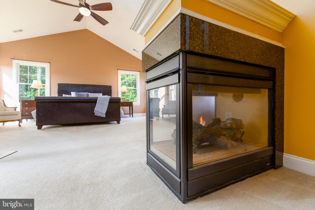 Master Bedroom with Double-Sided Fireplace - 9520 PENIWILL DR, LORTON