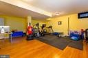 Lower Level Weight/Workout Room - 9520 PENIWILL DR, LORTON