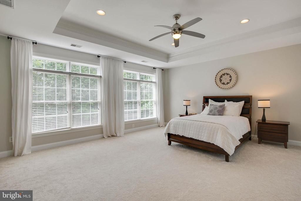 Master Bedroom - Windows overlook backyard - 43353 VESTALS PL, LEESBURG