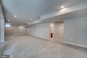 Finished basement - 17266 HARMONY VISTA DR, HAMILTON