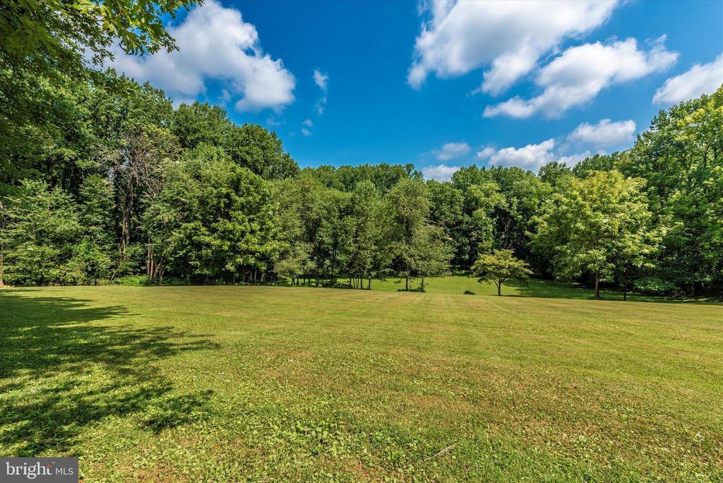 Backyard View - 11820 BROWNINGSVILLE RD, MONROVIA