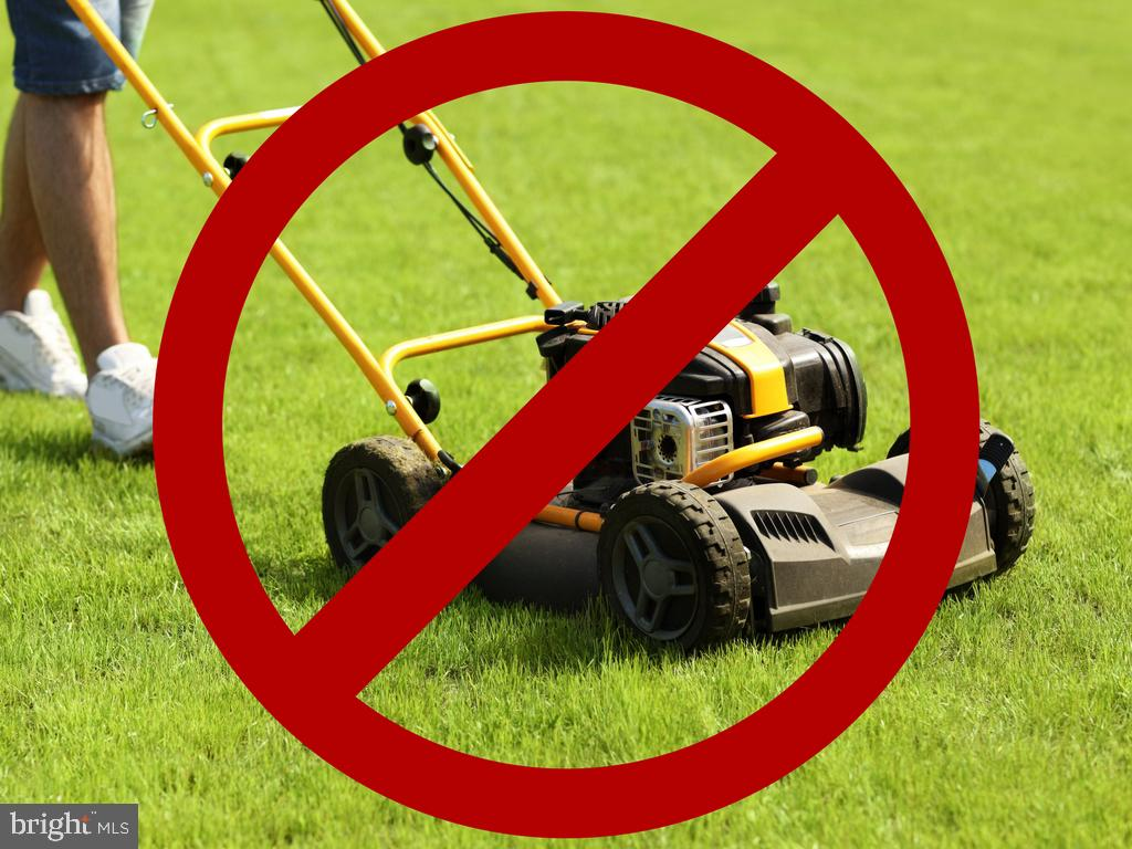 And NO MORE MOWING :) - 43397 BALLANTINE PL, ASHBURN