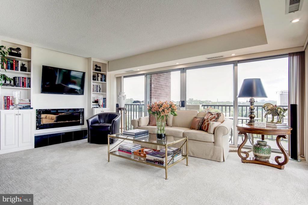 Custom built-in and electric fireplace - 1300 ARMY NAVY DR #1009, ARLINGTON
