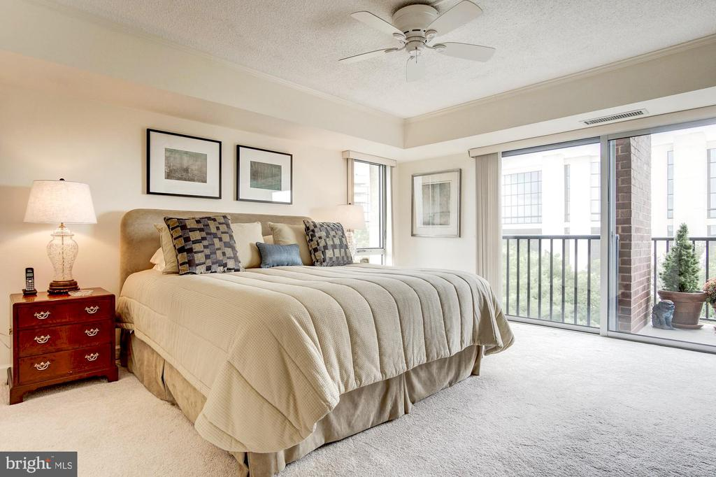 Owner's suite - 1300 ARMY NAVY DR #1009, ARLINGTON