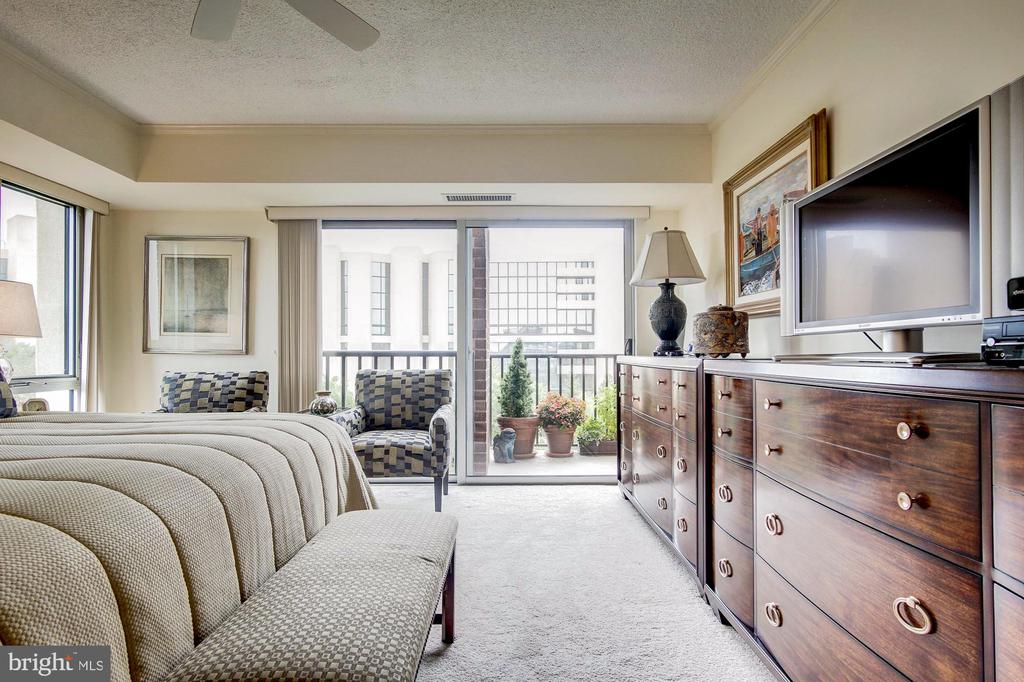 Additional bedroom accessible from the bedroom - 1300 ARMY NAVY DR #1009, ARLINGTON