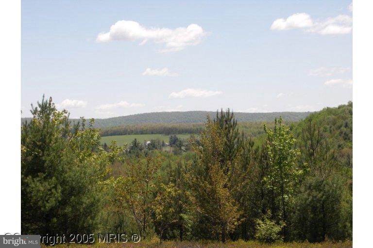 Land for Sale at 13 Deer Crest Ct Swanton, Maryland 21561 United States