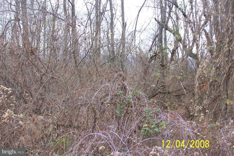 Land for Sale at Lot 1d Cito Road Mc Connellsburg, Pennsylvania 17233 United States
