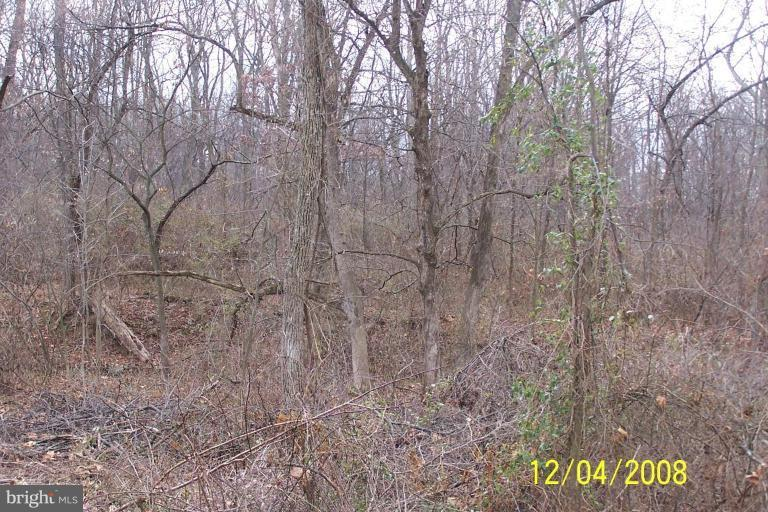 Land for Sale at Lot 1f Crossroads/Cito Road Mc Connellsburg, Pennsylvania 17233 United States