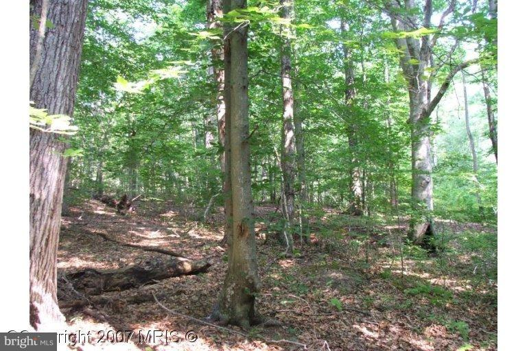 Land for Sale at Kentucky Springs Rd Mineral, Virginia 23117 United States