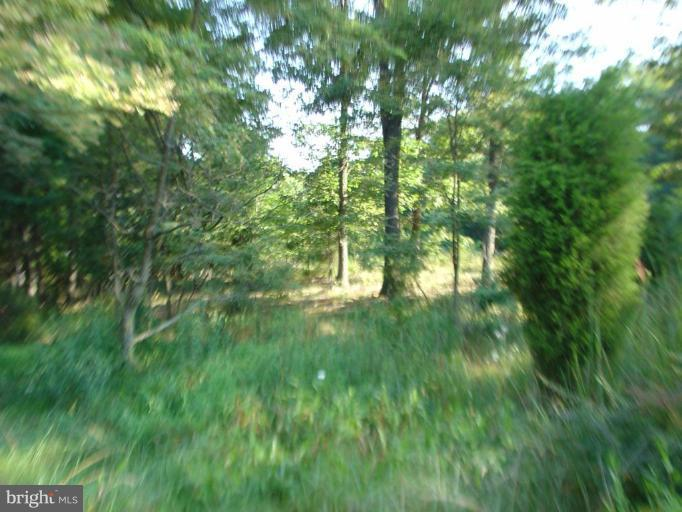 Additional photo for property listing at State Route 55  Wardensville, West Virginia 26851 United States