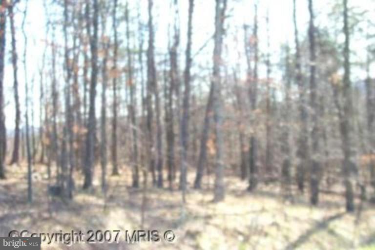 Land for Sale at 10415 Pin Oak Ct Ellerslie, Maryland 21529 United States