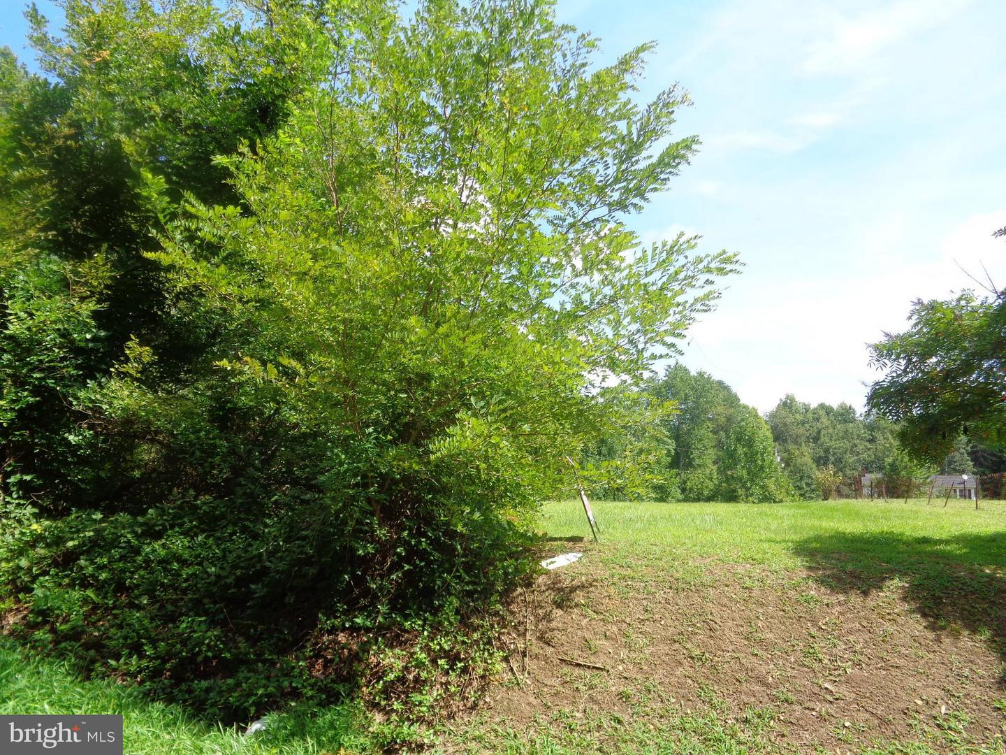 Land for Sale at Elk Run Midland, Virginia 22728 United States