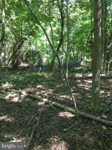 Additional photo for property listing at Log Inn Road  Annapolis, Maryland 21409 United States