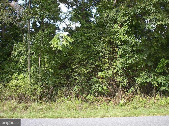 Land for Sale at Harpers Ferry Rd Knoxville, Maryland 21758 United States