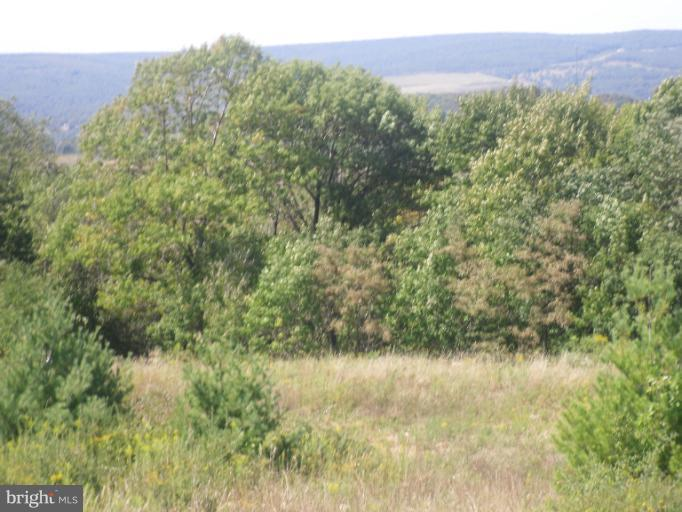 Additional photo for property listing at Lot 26 Summit Cir  Frostburg, Maryland 21532 United States