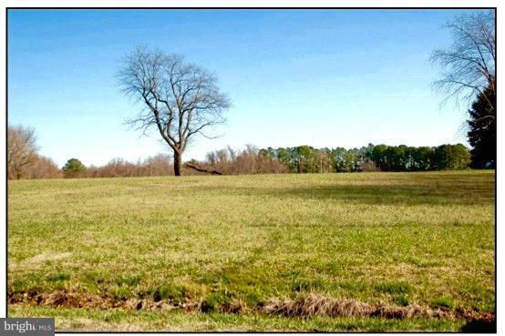 Land for Sale at Piney Neck Road Rock Hall, Maryland 21661 United States
