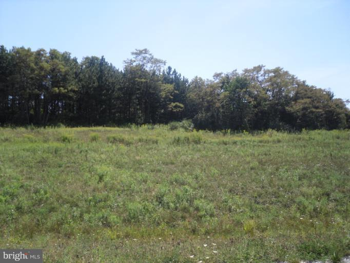 Additional photo for property listing at Lot 1 Barbers Hill Rd  Frostburg, Maryland 21532 United States