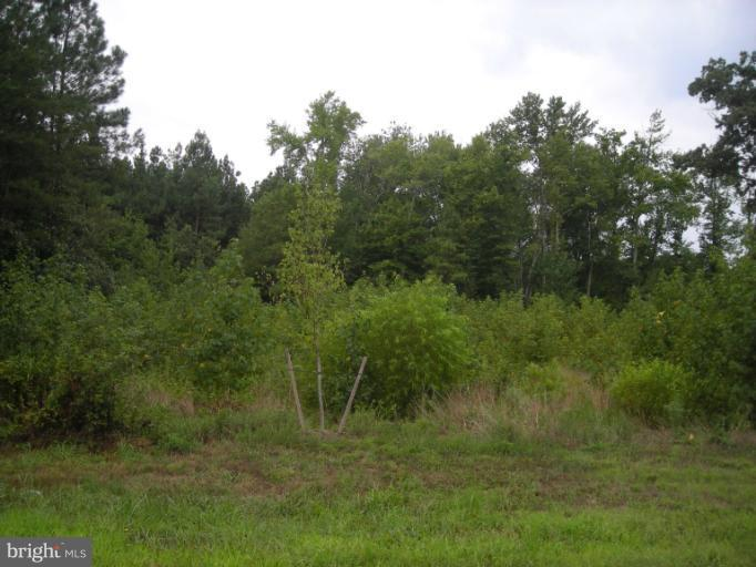Land for Sale at 13571 Sugar Mill Ct Waldorf, Maryland 20601 United States
