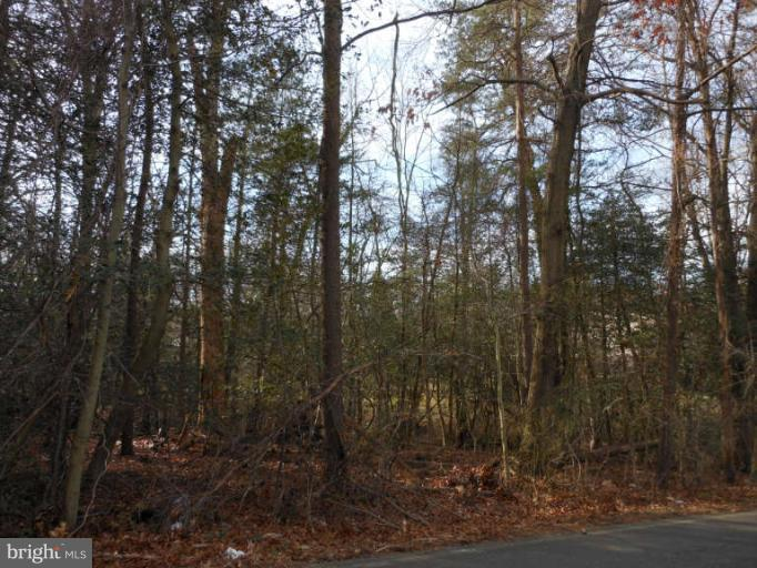 Land for Sale at 1645 Wall Dr Pasadena, Maryland 21122 United States
