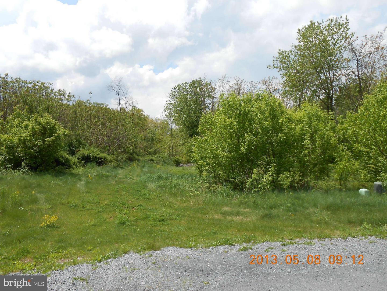 Land for Sale at 38 Apple Jack Ct Mercersburg, Pennsylvania 17236 United States