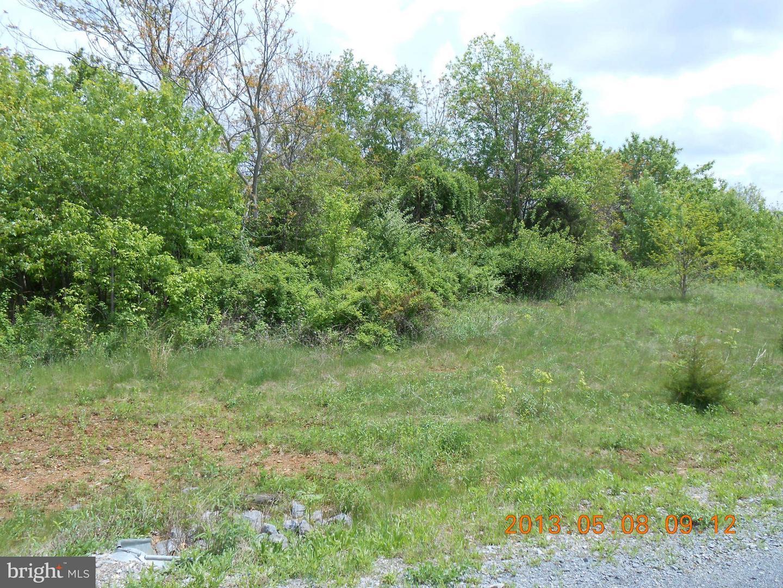 Additional photo for property listing at 38 Apple Jack Ct  Mercersburg, Pennsylvania 17236 United States