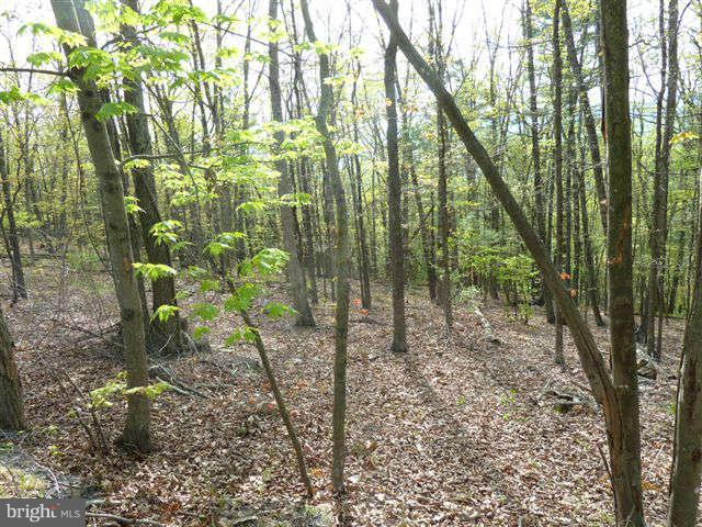 Land for Sale at 0 Supinlick Ridge Road Mount Jackson, Virginia 22842 United States