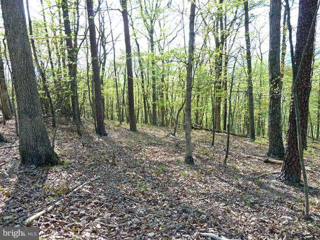 Additional photo for property listing at 0 Supinlick Ridge Rd  Mount Jackson, Virginia 22842 United States