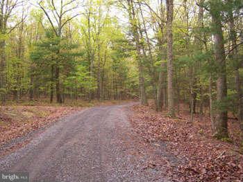 Land for Sale at Transylvania Av. Berkeley Springs, West Virginia 25411 United States