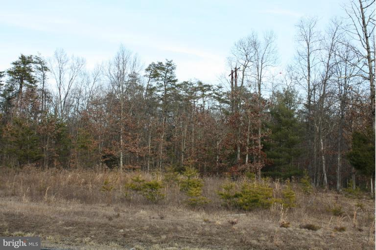 Additional photo for property listing at Springwood Lot 5 Way  Stephens City, Virginia 22655 United States