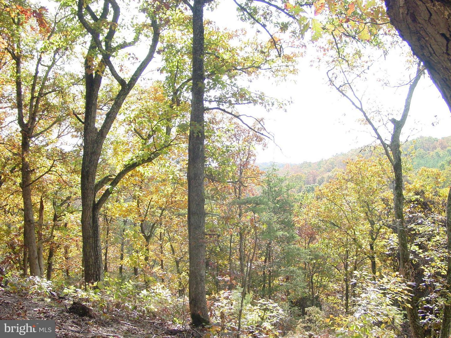 Land for Sale at Oak Hill Ct Stephens City, Virginia 22655 United States