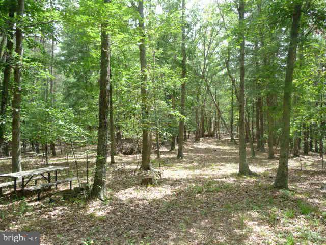 Additional photo for property listing at Ridge View Dr  Oldtown, Maryland 21555 United States