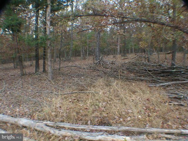 Additional photo for property listing at Todd Coates Lot #14  Winchester, Virginia 22603 United States