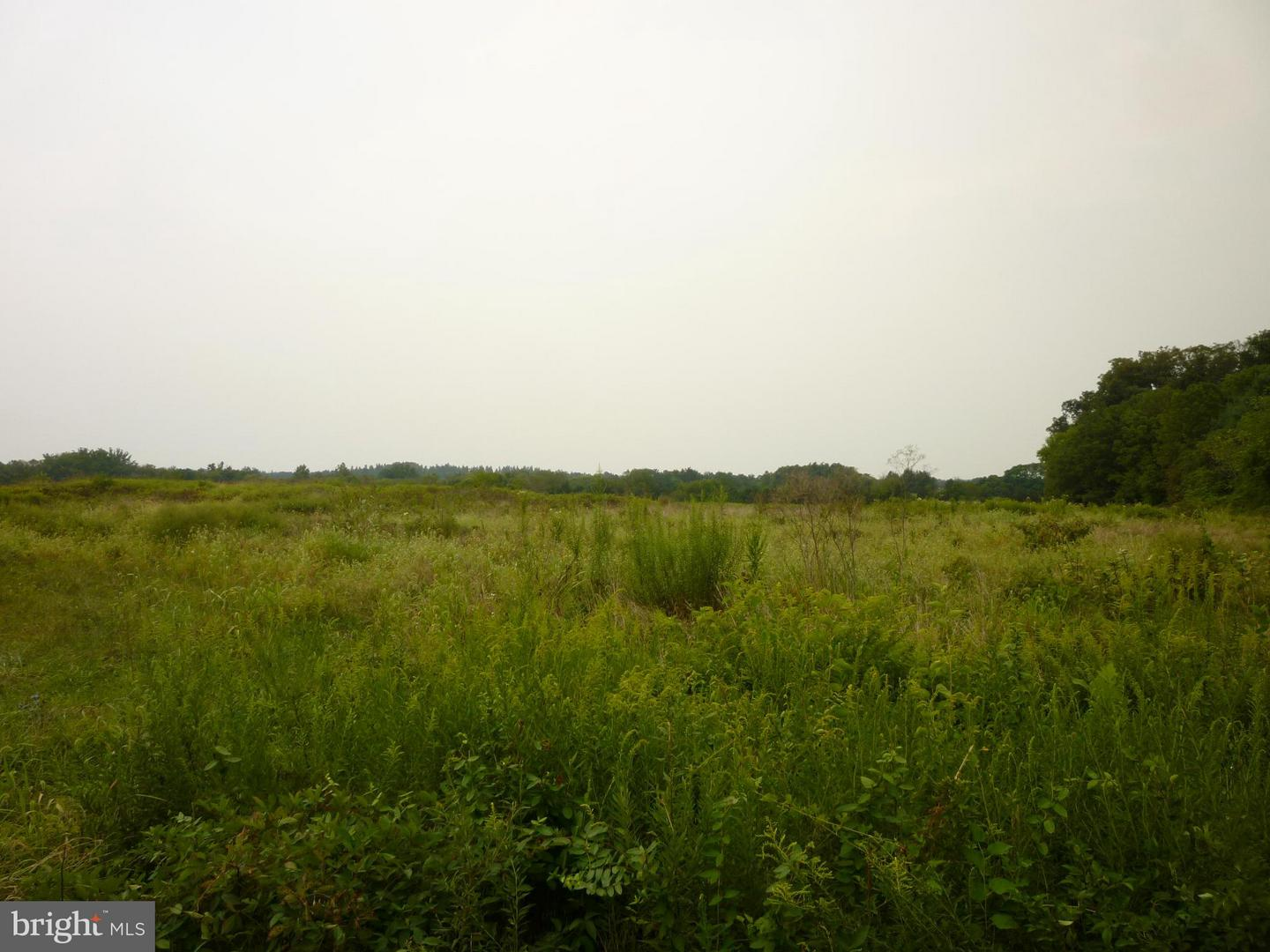 Additional photo for property listing at 0 Bristersburg Rd  Catlett, Virginia 20119 United States