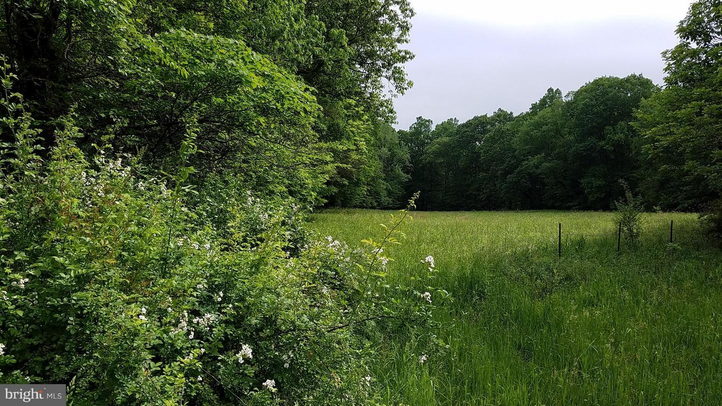 Land for Sale at Lot 5 Winchester Grade Rd Berkeley Springs, West Virginia 25411 United States