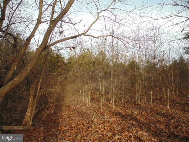 Land for Sale at Orange Springs Road Unionville, Virginia 22567 United States
