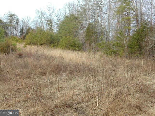 Additional photo for property listing at Orange Springs Road  Unionville, Virginia 22567 United States